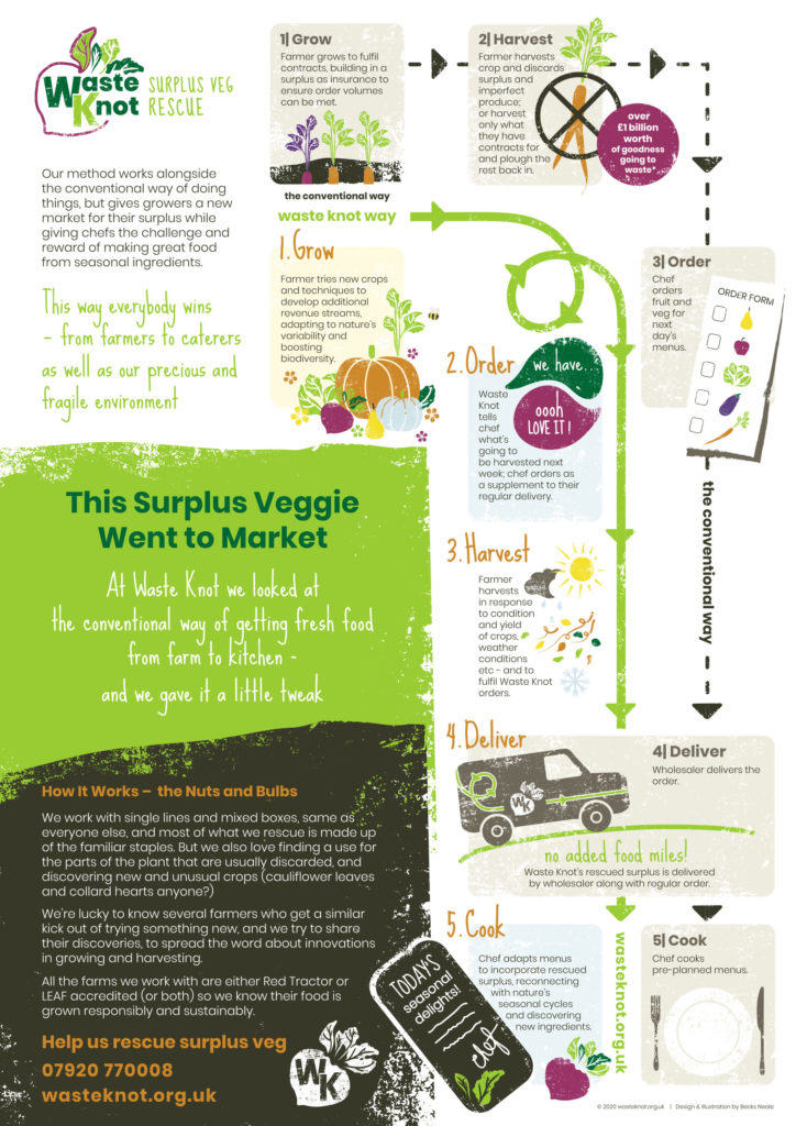 brand-infographics-communicate-process