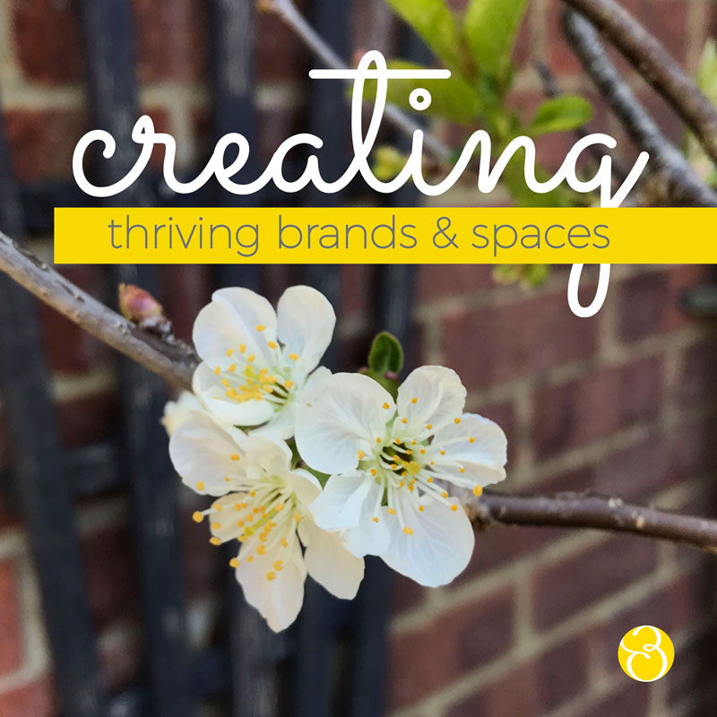blooming blossom illustrating brand-purpose-and-impact-for-creating-thriving-biodiverse-spaces-no matter how small-designer Becks-Neale